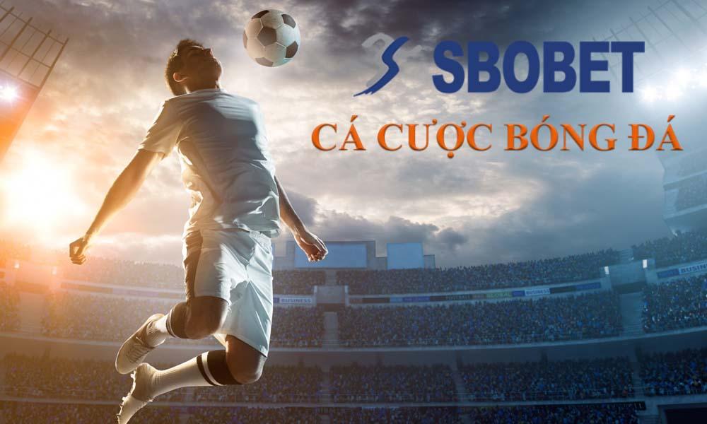 Cá cược bóng đá online tại SBOBET